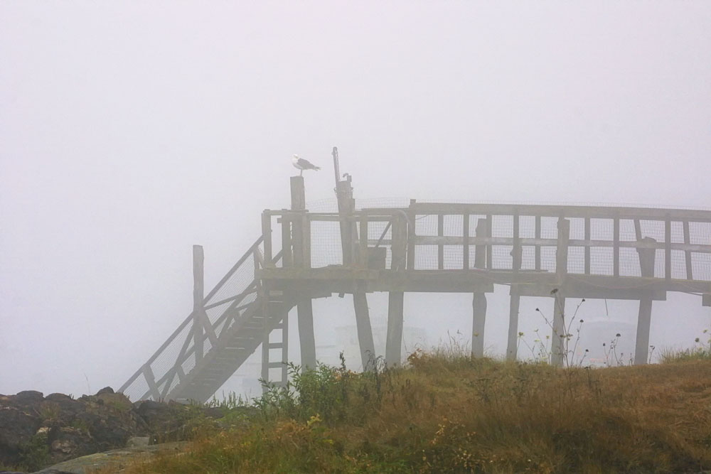 Nothing to do but wait around until the fog clears.