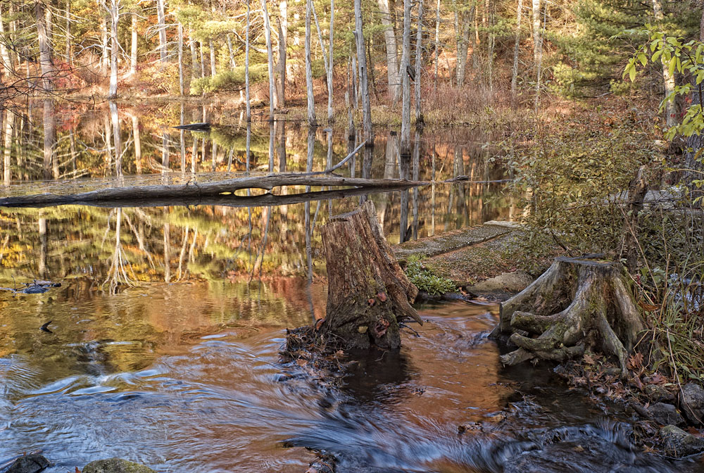 Water flows from a small pond in Massachusetts