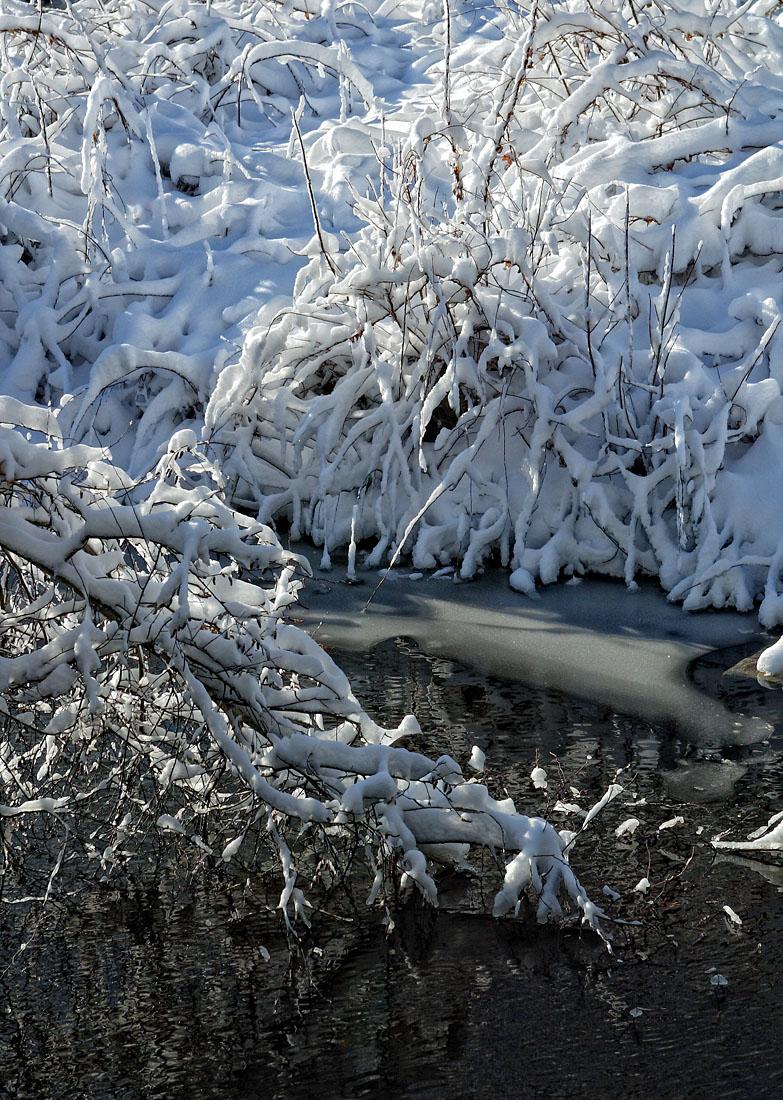 Winter scene not far from home.